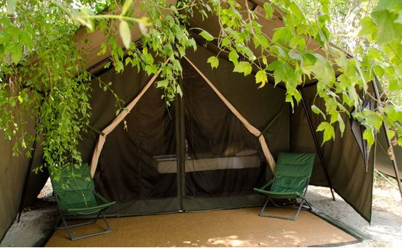 Leopard Trails Luxury Camp