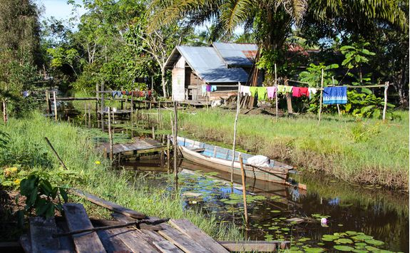Houses in Tanjung Puting National Park, Kalimantan