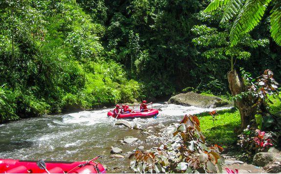 Rafting in the jungle in Bali