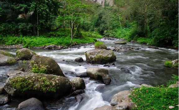 Ubud river rapids