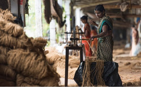 coir production in backwaters