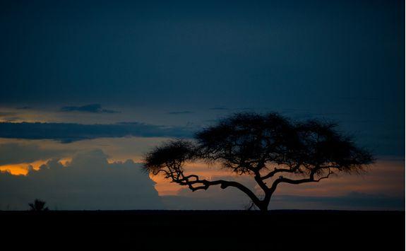 sunset at katavi