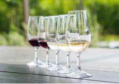 Image of wine tasting glasses