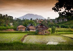 Village, Bali