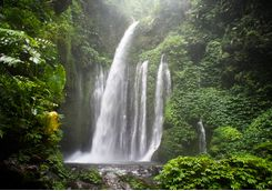 Waterfall, Indonesia