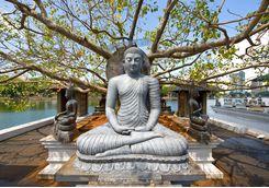 Statue Sri Lanka