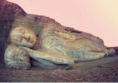 Buddha, Polonnaruwa