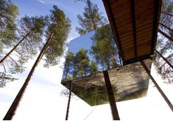 treehotel glass house
