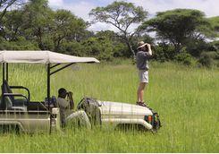 Game watching in Tanzania