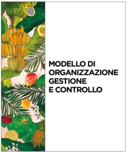 Modello di organizzazione gestione e controllo