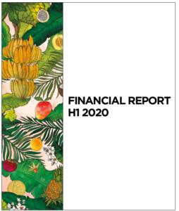 Financial Report H1 2020