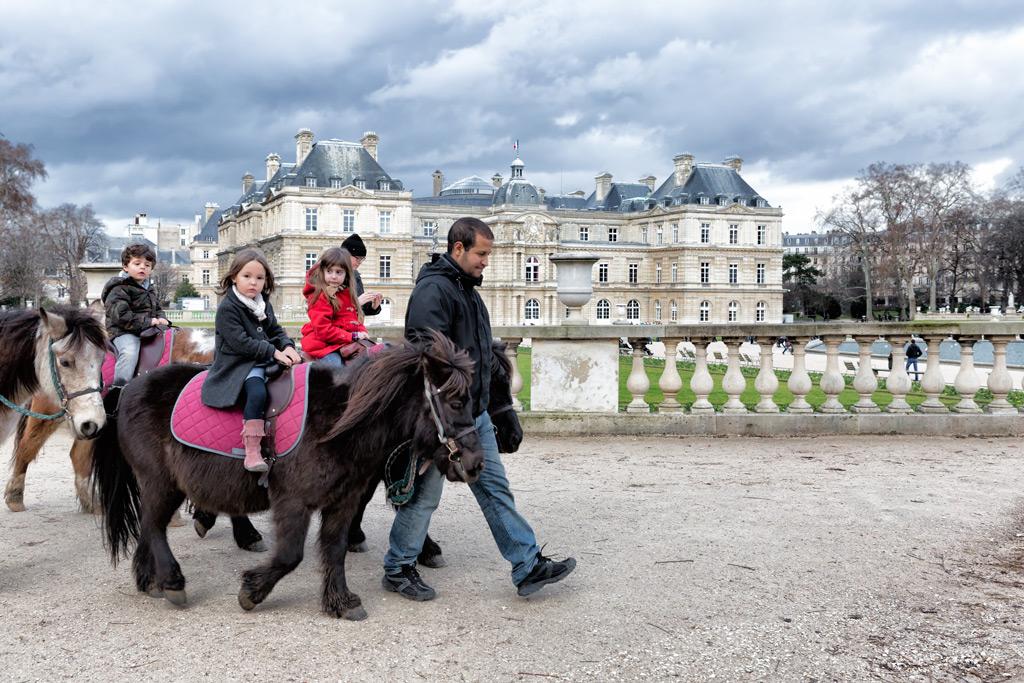 Фото: Дети катаются на пони