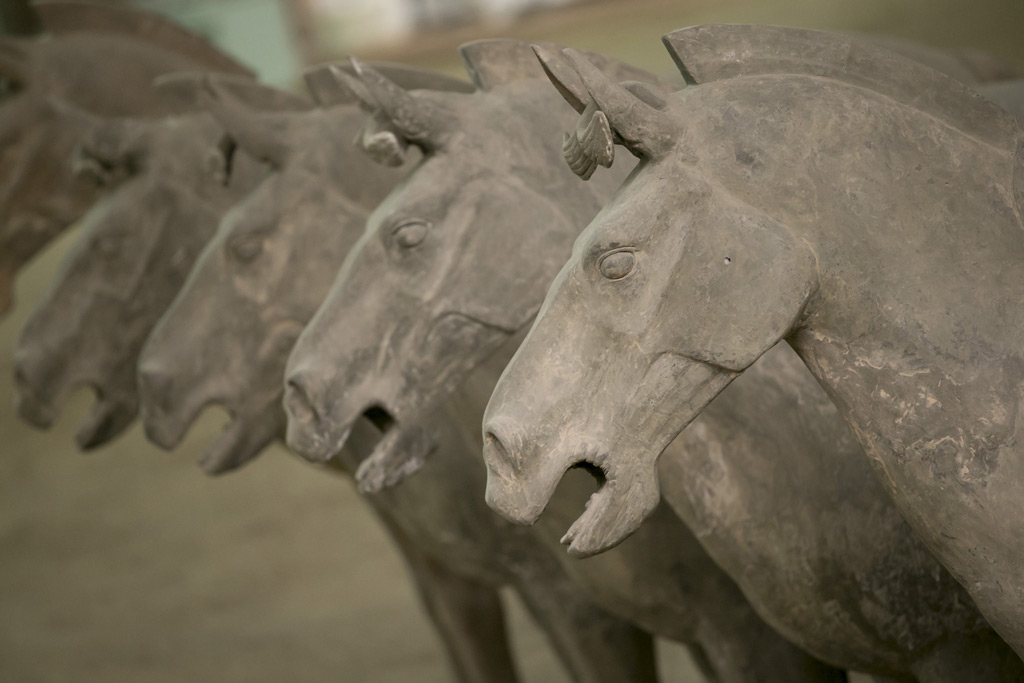 Фото: Лошади Терракотовой армии