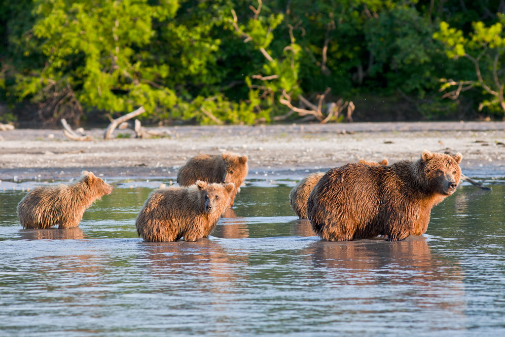 Фото: Налычевский природный парк