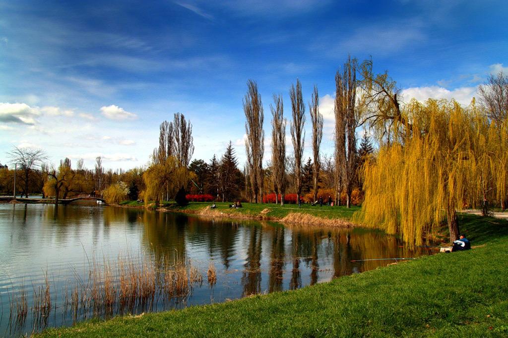 Фото: Гагаринский парк