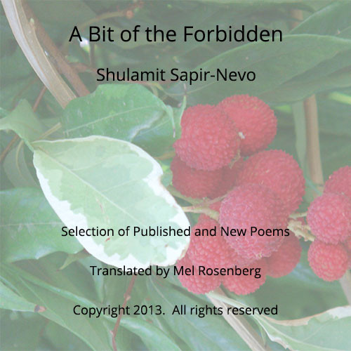 Artwork from the book - A Bit of the Forbidden – Poems by Shulamit Sapir-Nevo, translated by Mel Rosenberg by Shulamit Sapir-Nevo - Ourboox.com