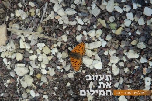 תעזוב את המילים by Shulamit Sapir-Nevo - Ourboox.com