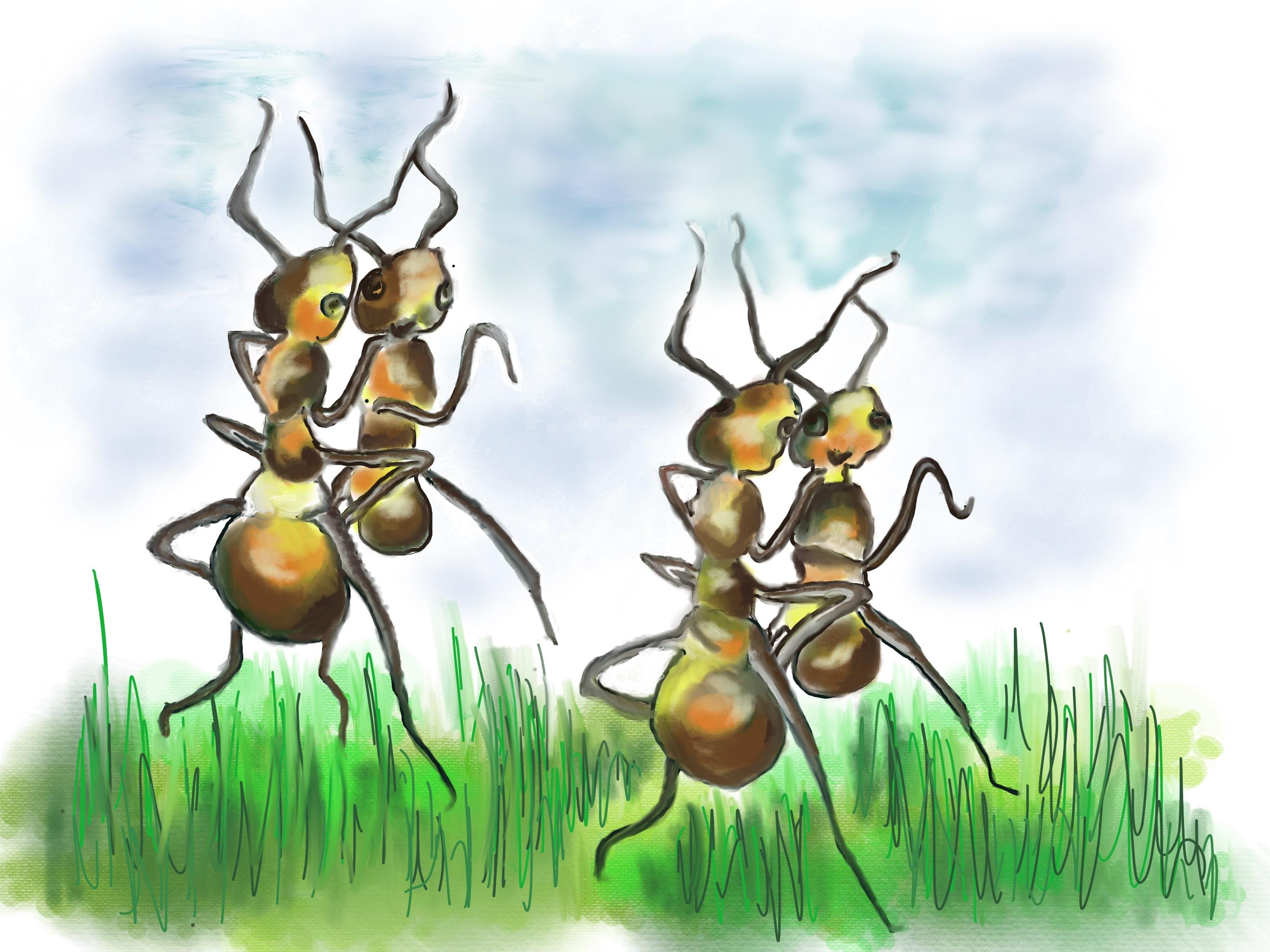 Nuli the lazy aunt – נולי הנמלה העצלה by Rachel Tucker Shynes - Illustrated by Rachel Tucker Shynes/רחל טוקר שיינס - Ourboox.com