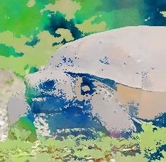Artwork from the book - Mind and body balance  אגו – איזון גוף ונפש by Rachel Tucker Shynes - Illustrated by Rachel Tucker Shynesרחל טוקר שיינס - Ourboox.com