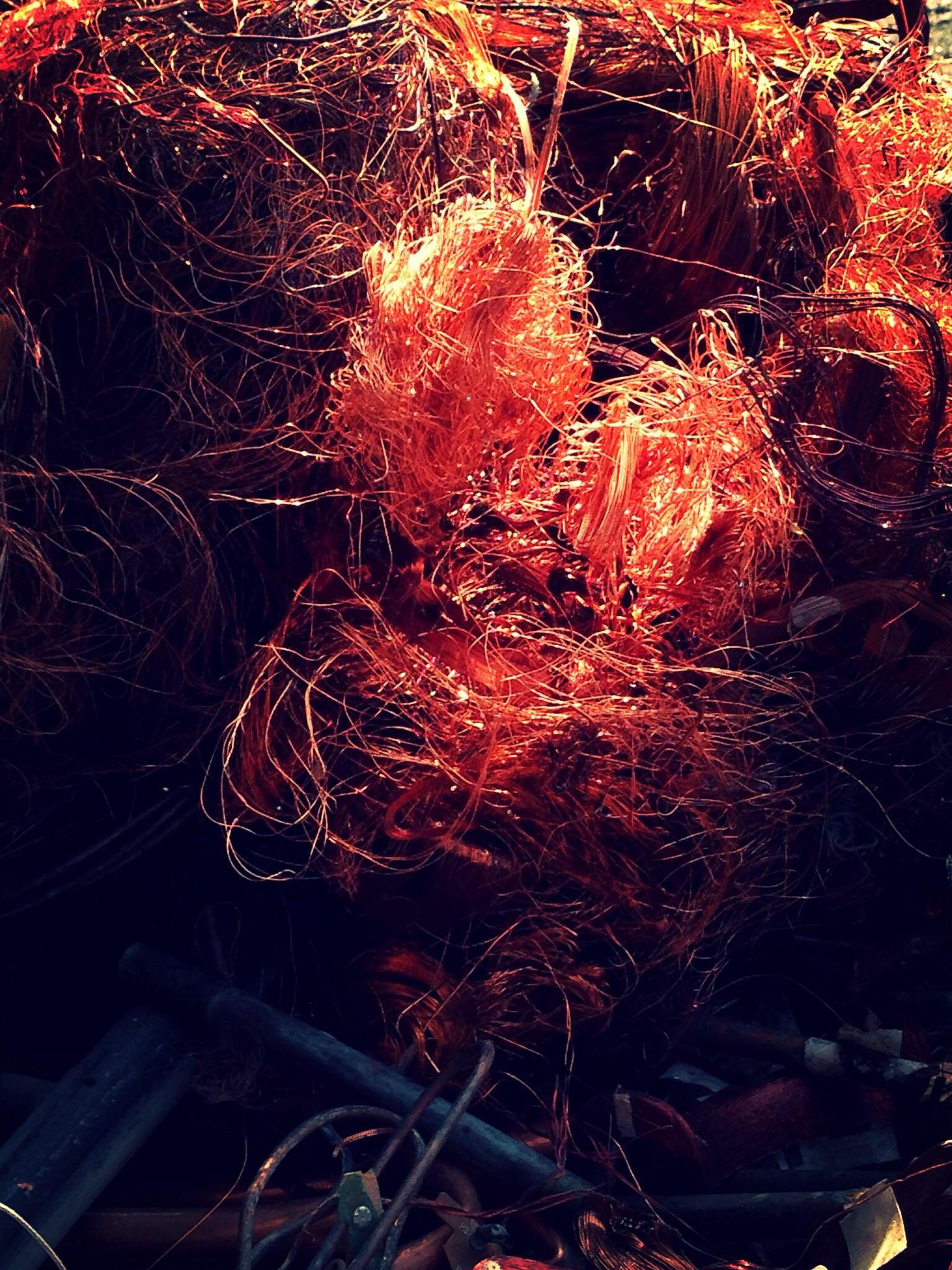 Artwork from the book - When Autumn comes   –   עם בוא הסתיו by Rachel Tucker Shynes - Illustrated by Rachel Tucker Shynes/רחל טוקר שיינס - Ourboox.com