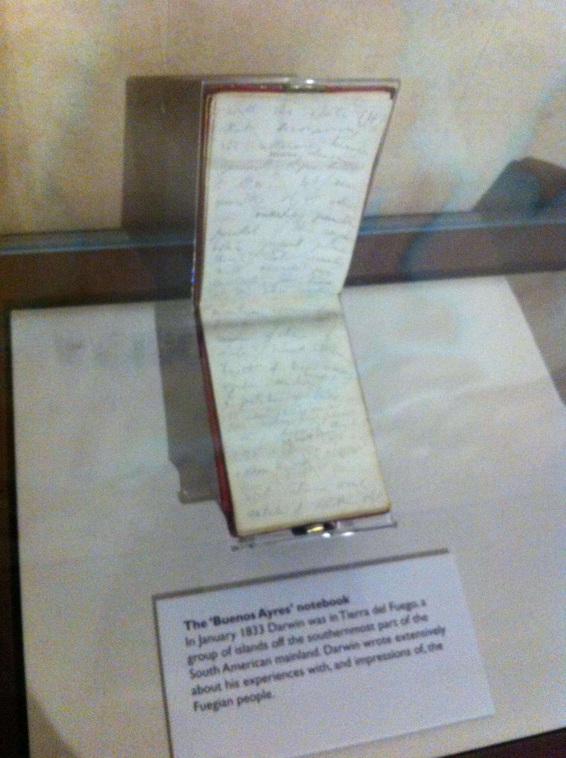 a logbook of Charles Darwin