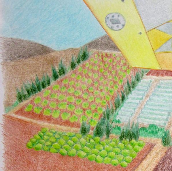 אמיתי מטייל בשמיים by Rotem Omri - Illustrated by רתם עמרי - Ourboox.com