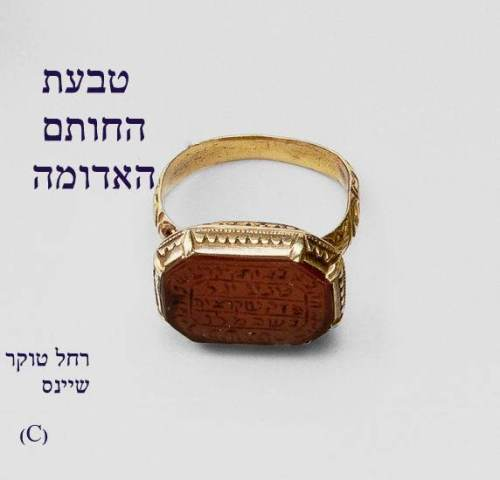 טבעת החותם האדומה by Rachel Tucker Shynes - Illustrated by Rachel Tucker Shynes/רחל טוקר שיינס - Ourboox.com