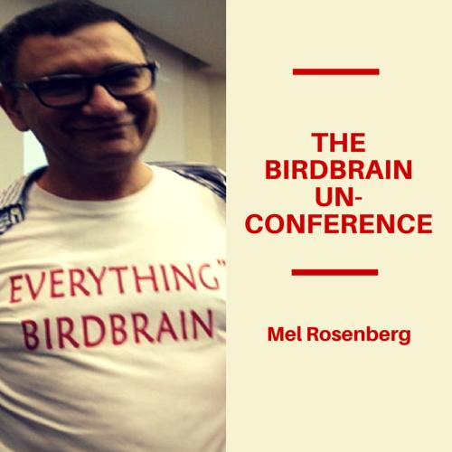 The BirdBrain Un-conference by Mel Rosenberg - מל רוזנברג - Ourboox.com