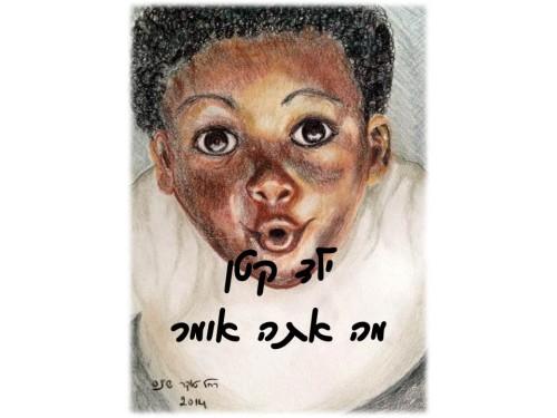 Little Boy         ילד קטן מה אתה אומר? by Rachel Tucker Shynes - Illustrated by Rachel Tucker Shynes - Ourboox.com