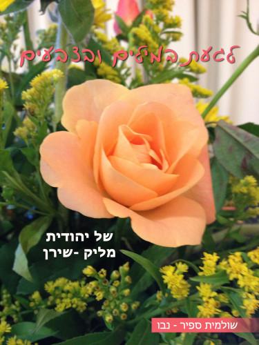 לגעת במילים ובצבעים של יהודית מליק -שירן by Shuli Sapir-Nevo Photo and Motto - Illustrated by Photos by Shulamit Sapir-Nevo - Ourboox.com