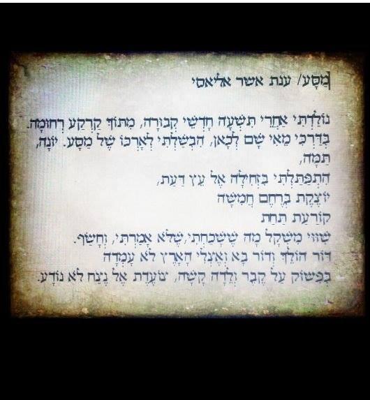 ספר ביכורים – ענת אשר / Anat Asher by Yoged - יגודז
