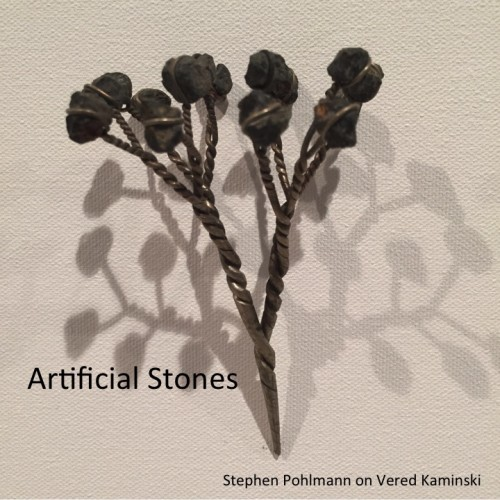 Artwork from the book - Artificial Stones by Stephen Pohlmann - Illustrated by Vered Kaminski - Ourboox.com