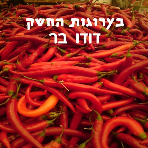 Embed by דודו בר - Ourboox.com