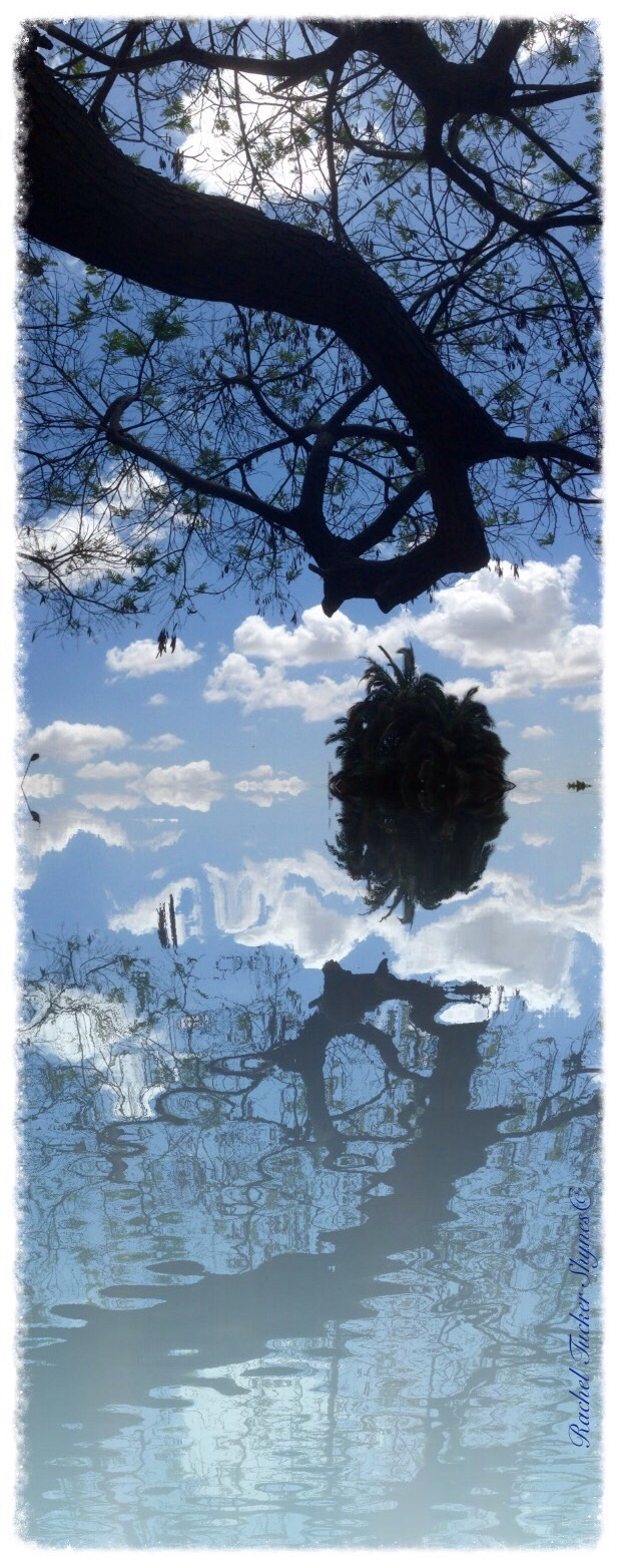 Artwork from the book - השתקפויות/Reflections by Rachel Tucker Shynes - Illustrated by Rachel Tucker Shynes/רחל טוקר שיינס - Ourboox.com