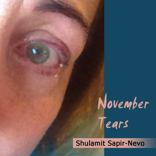 Artwork from the book - November Tears by Shulamit Sapir-Nevo - Illustrated by Shulamit  Sapir-Nevo - Ourboox.com