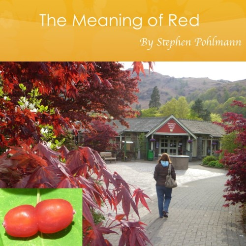 Artwork from the book - The Meaning of Red by Stephen Pohlmann - Illustrated by Stephen Pohlmann - Ourboox.com