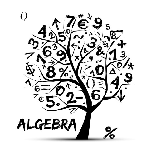 What is Algebra? by Heather Walsh - Ourboox.com