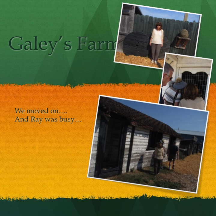 Galey's Farm by Stephen Pohlmann - Illustrated by Stephen Pohlmann - Ourboox.com