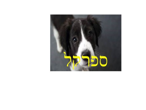 הכלב שלי by viki f. - Illustrated by נעמי הלפר - Ourboox.com