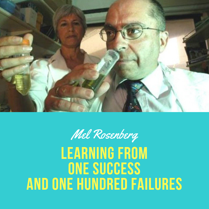 Learning from One Success and One Hundred Failures by Mel Rosenberg - מל רוזנברג - Ourboox.com