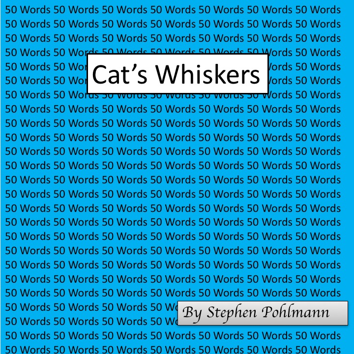 Artwork from the book - 50W – Cat's Whiskers by Stephen Pohlmann - Ourboox.com