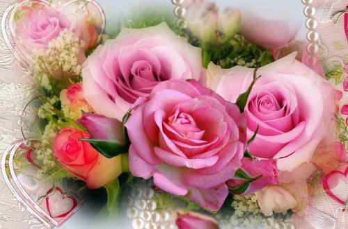 Flores Lindas Flores Ourboox