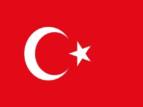 Artwork from the book - ספר דיגיטלי-טורקיה by eunhakore - Illustrated by מאיה,נועה,פלג,טל סורני,אופק,נלי ,זואי - Ourboox.com