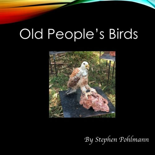 Old People's Birds by Stephen Pohlmann - Illustrated by The Elderly of Israel - Ourboox.com