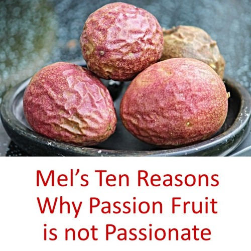 Artwork from the book - Mel's Ten Reasons Why Passion Fruit is not Passionate by Mel Rosenberg - מל רוזנברג - Ourboox.com