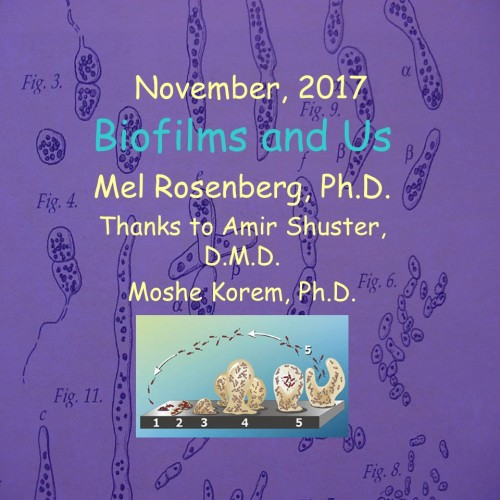 Artwork from the book - Biofilms and Health by Mel Rosenberg - מל רוזנברג - Ourboox.com