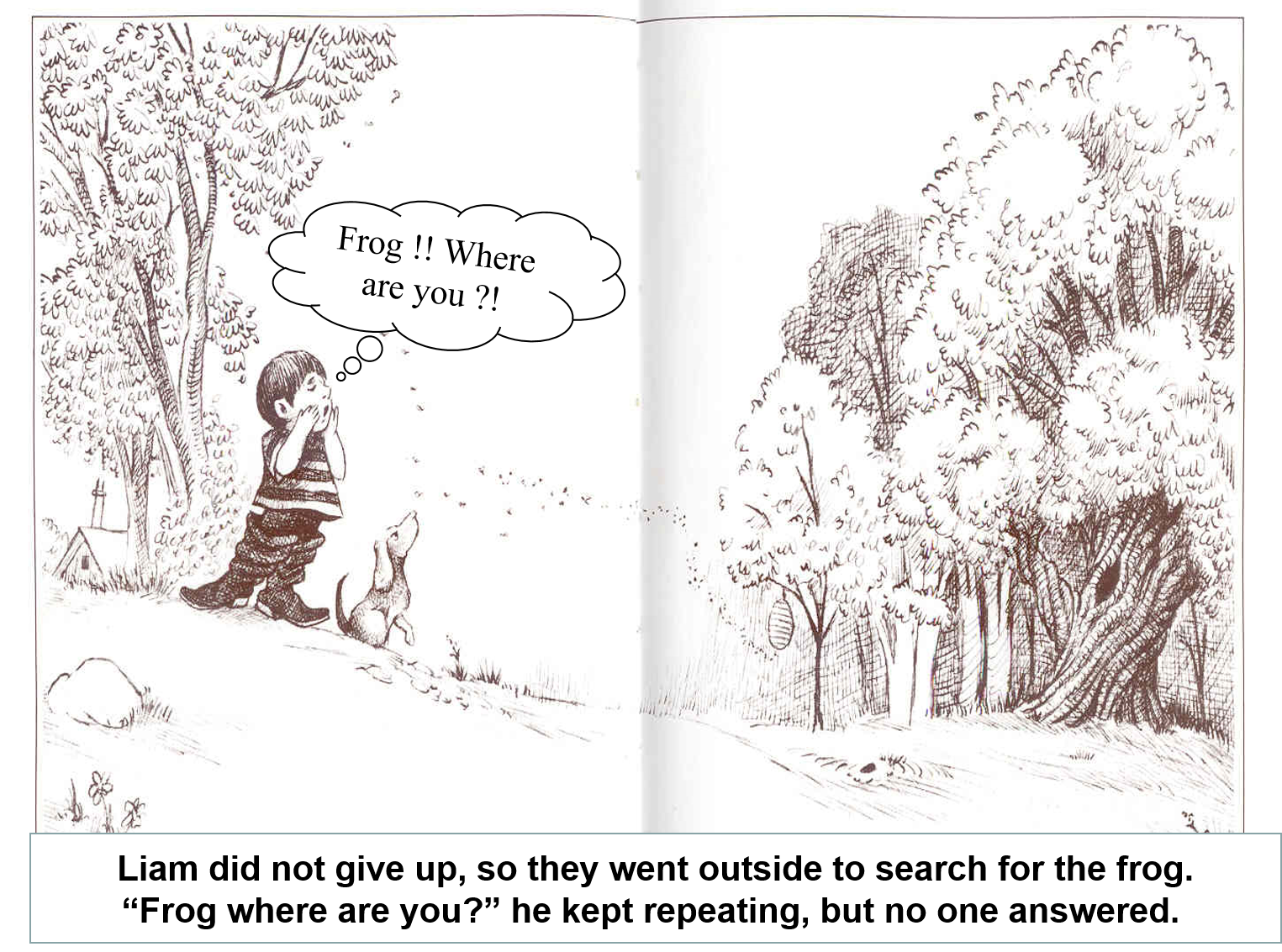 Artwork from the book - Frog where are you ? by Roaa Haj Yahya - Illustrated by Roaa Haj Yahya - Ourboox.com