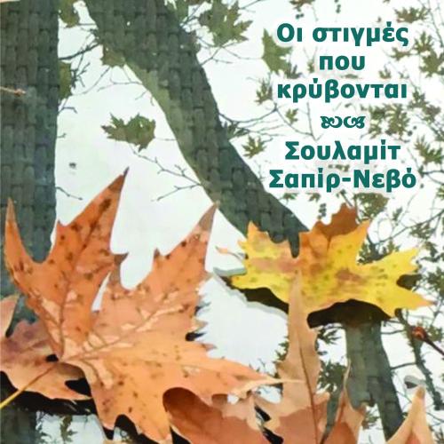 Οι στιγμές που κρύβονται by Shulamit Sapir-Nevo - Illustrated by Σουλαμίτ Σαπίρ-Νεβό - Ourboox.com