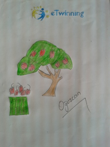 Artwork from the book - OUR TREES by Levent TOROS - Illustrated by Necatibey Primary School 3-B Class Students - Ourboox.com