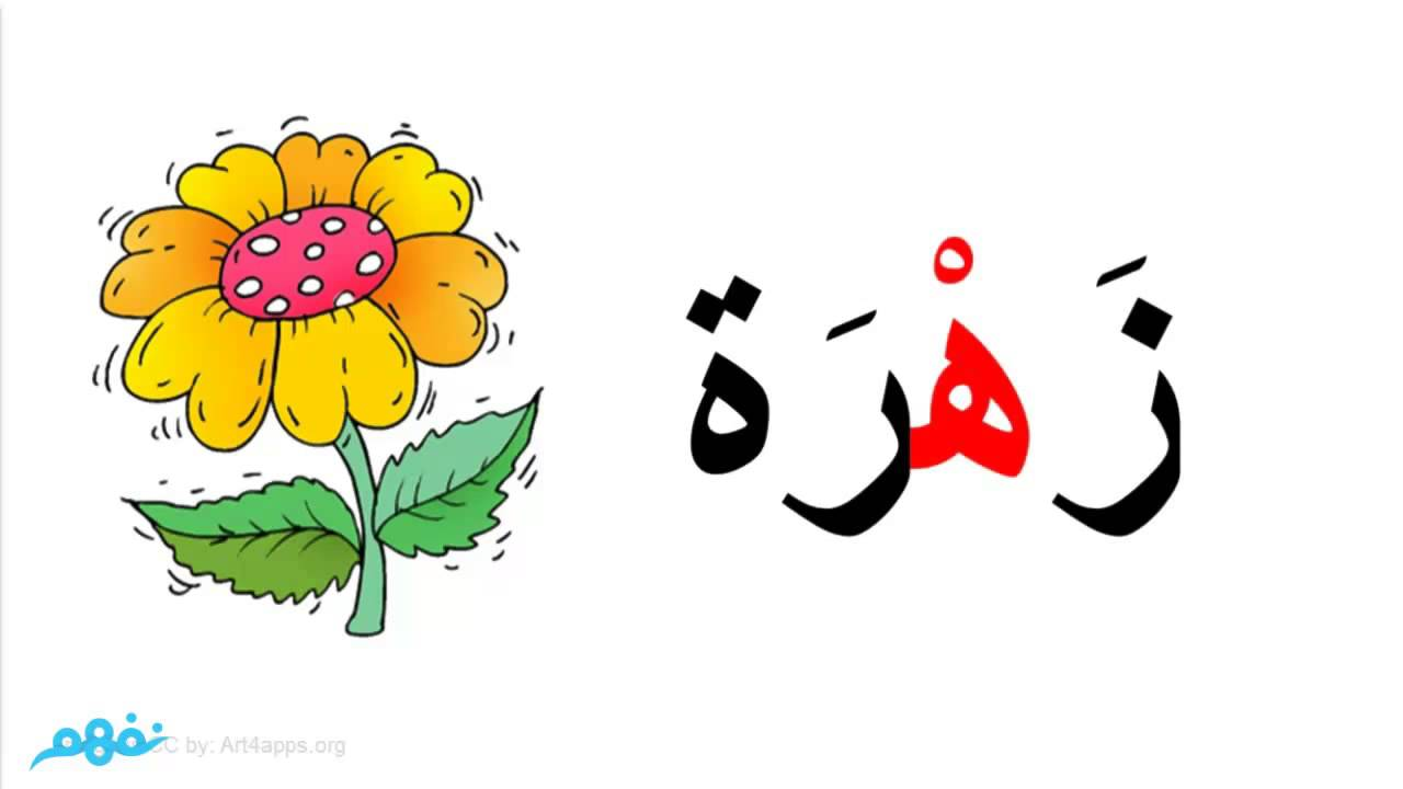 الحروف by hala dahli - Illustrated by هاله دحلة - Ourboox.com